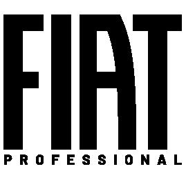 Fiat Professional Angola